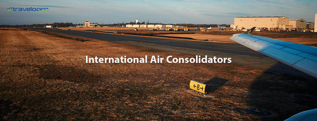 International Air Consolidators